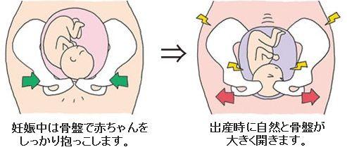 産後の骨盤
